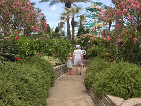 Moody gardens coupons discounts